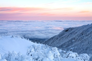 눈이 시리도록 아름다운 한라산 설경(어리목코스)