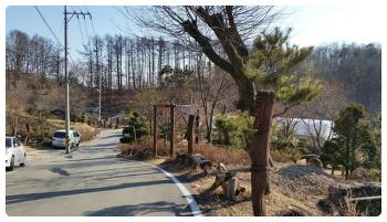 초봄.. 청주 장승공원에 오르다..