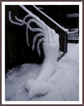 밖에 눈오징어