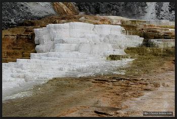 [미북서부 로드트립] 와이오밍 ③, 옐로스톤 국립공원