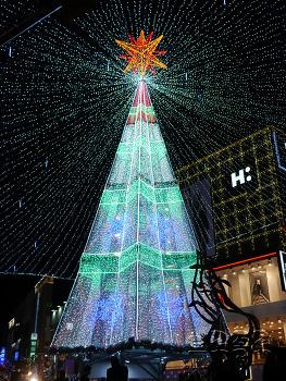 [부산 여행] 광복로 부산 크리스마스트리 문화축제