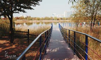 #20141019 :[gr] 가을
