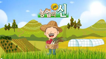 [TV방영-CJ헬로비전]농업의신, 농산물 생산, 가공, 체험까지 6차산업의 선도하는 가나골체험농장에서 소비자와 함께하는 산머루효소담그기체험