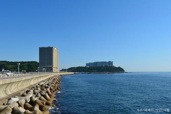 [속초숙박] 푸른 동해바다가 시원스레 펼쳐지는 멋진 조망, 속초 라마다호텔