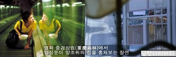 중경삼림 배경 홍콩 미드레벨 에스컬레이터;홍콩 가볼만한곳