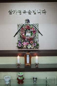 [펫장례식장] 강아지넷에서 우리 모모를 떠나보내다..