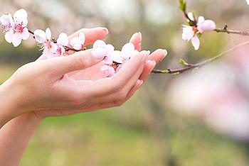 동탄 리베라CC 제 3회 벚꽃축제 EVENT 당첨자 발표!