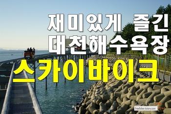 재미있게 즐긴 대천해수욕장 스카이 바이크 이용기