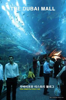 세계에서 가장큰 최고의 쇼핑몰 DUBAI MALL