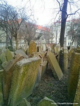 프라하 유대인묘지, 처참했던 역사의 증거