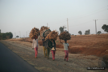 Ethiopia. Bahir Dar에서 Addis 오는 길 (2012.02.21)