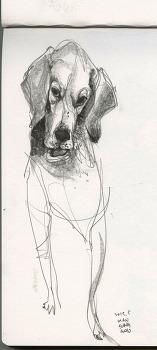 강아지 이야기를 위한 드로잉