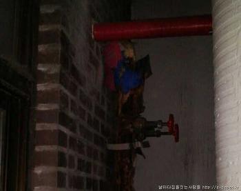 노후화된 배관보수 및 난방판넬시공 [집수리/집짓기/주택신축/건축적산/공사견적]