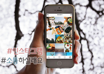 봄비 내리는 4월 예쁜 봄꽃들♬ 인스타그램 인친맞팔 해요!