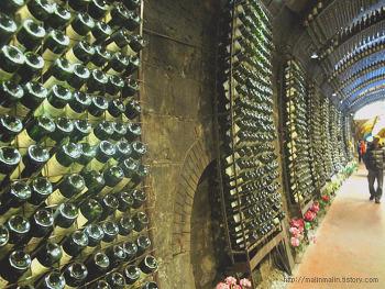 청도여행 - 감 와인 터널