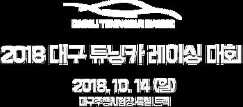 2018 대구 튜닝카 레이싱 대회, 'DAEGU TUNINGCAR RACING'