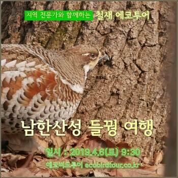 남한산성 들꿩 여행 (4월6일,토)