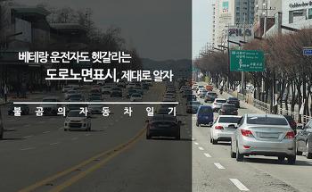 베테랑 운전자도 헷갈리는 도로노면표시