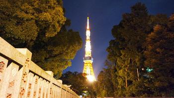 Day 2. 도쿄 - 도쿄타워(東京タワー) (1)