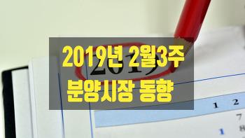 2019년 2월3주 공동주택 분양시장 동향