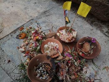 [해외활동가 편지] 부처의 승리를 기념하는 파탄의 축제, Mataya Festival