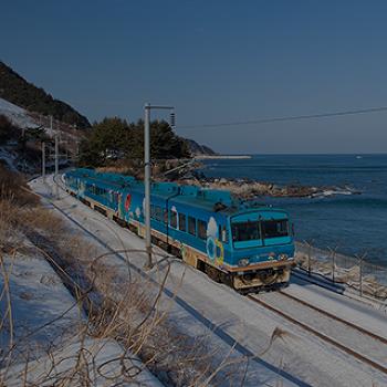 새해 겨울 여행으로 딱 좋은 연말연시 국내여행지 5