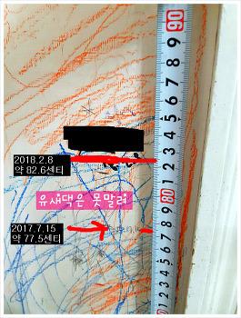 <직접구매>밥 양 적은 우리 똘망이.. 잘크톤 포르테(엘레멘에스시럽 +가레오)으로 두 달 에 2킬로 살찌다!!! (feat,유아 살찌우기, 밥 안먹는 아이, 밥 잘안먹는 아기, 잘크톤 효과, )