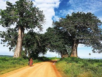 [해외활동가 편지]여기가 이역만리 타국인가? 스와힐리어로 탄자니아 읽는 법