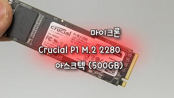 포스트 낸드의 시작!! 마이크론 Crucial P1 M.2 2280 아스크텍 (500GB)