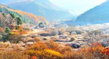 가을과겨을 17ㅡ11ㅡ9 비   ㅡ정