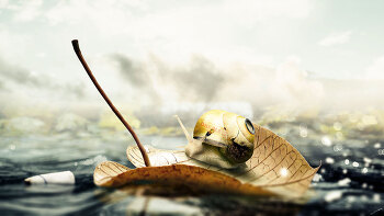 포토샵 합성 강좌 달팽이 (Photoshop Manipulation Tutorial Snail)