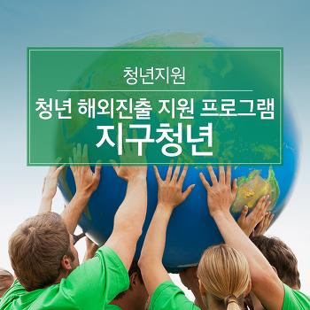 청년지원, 청년 해외진출 지원을 위한 지구청년