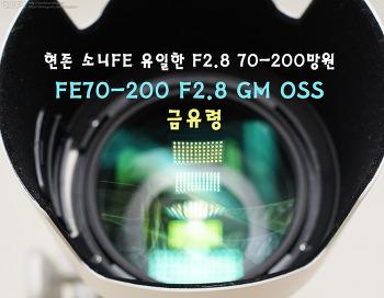 소니 FE 현재 유일한 70-200F2.8 줌렌즈 [금유령]