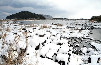 하얀 겨울 제주도