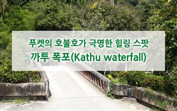 호불호가 극명하게 갈리는 힐링 스팟 : 까투 폭포(Kathu waterfall)