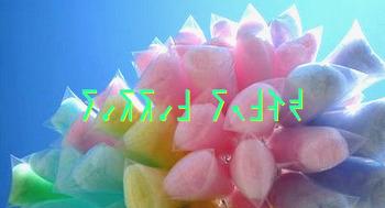 [시] 솜사탕 (Cotton Candy)