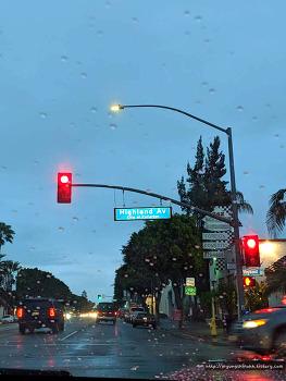 캘리포니아 여행, LA여행, 지금 LA날씨와 옷차림 정보