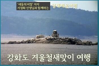강화도 겨울철새맞이 여행, 10월7일(일)