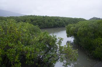 대만 여행 - 넷째날 - 3. 신베이시 (홍수림역~단수이역 산책 & 스린야시장)