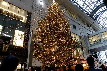 크리스마스 in 후쿠오카 #2-2 : 크리스마스 이브 분위기, 슈프림, 베이프, 스투시, 후즈스토어, Y-3 등 다이묘 산책, 텐진 크리스마스 마켓