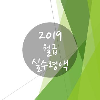 2019년 월급 실수령액 알아보기!!