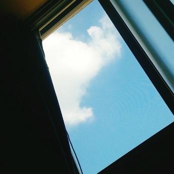 170811 창문에 걸린 솜사탕