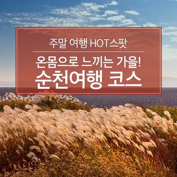 주말 여행 HOT스팟 : 온몸으로 느끼는 가을! 순천여행 코스