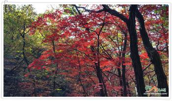 북한산 사기막골 ~ 숨은벽 능선, 가을 단풍 산행