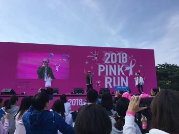 2018.10.14 핑크런 핑크리본마라톤 코요태 김종민 신지 빽가