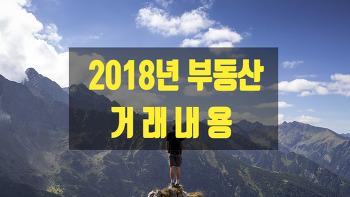 2018년 부동산 거래 내용 (feat : 거래절벽)