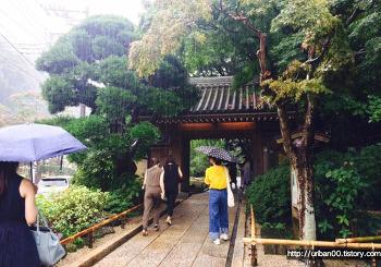 [일본여행] 도쿄 근교여행 가마쿠라 호코쿠지(報国寺) 대나무숲