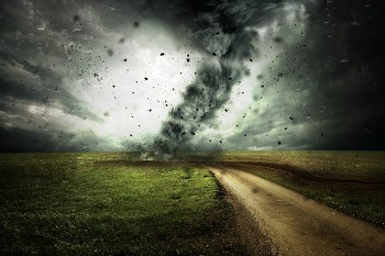선택의 가능성 ― 오래전 글이 불러온 바람