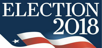트럼프 정부 미국 중간선거 최종 투표 결과 Midterm elections 2018