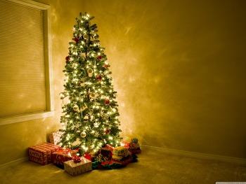 바탕화면 추천 Beautiful Christmas Tree HD Wallpaper 무료 배경 이미지